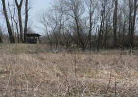 Vl Nye Highway, Eaton Rapids, MI 48827, ,Vacant Land,For Sale,Nye,235717