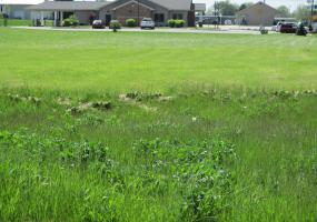 V/L M-21, Ovid, MI 48866, ,Vacant Land,For Sale,M-21,236807