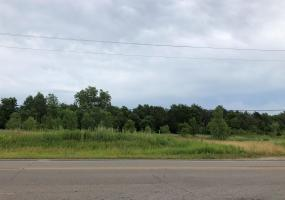 Vl Snow Road, Lansing, MI 48917, ,Vacant Land,For Sale,Snow,241192