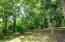 Mature trees on Lot