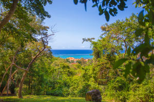 Ocean views from this hill side lot