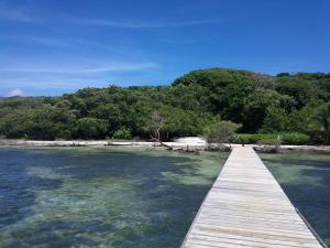 1 Bed 1 Bath Cottage, Helene, 4 Acres, 150 +/- Ft Beach, Roatan,