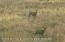 4124N4100W 4124 N 4100 W, Mackay, ID 83251