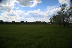 TBD Hammer Creek, Sheridan, WY 82801