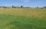 Meadow V2