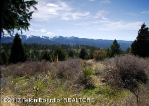 LOT24B3 CUTTHROAT RUN, Irwin, ID 83428