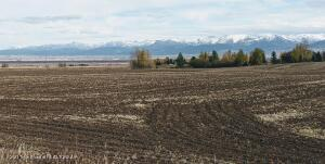 16.36 Acres with water rights.