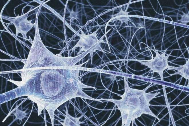New mathematical method reveals structure in neural activity in the brain