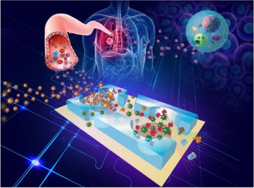 New 'lab-on-a-chip' could revolutionize early diagnosis of cancer