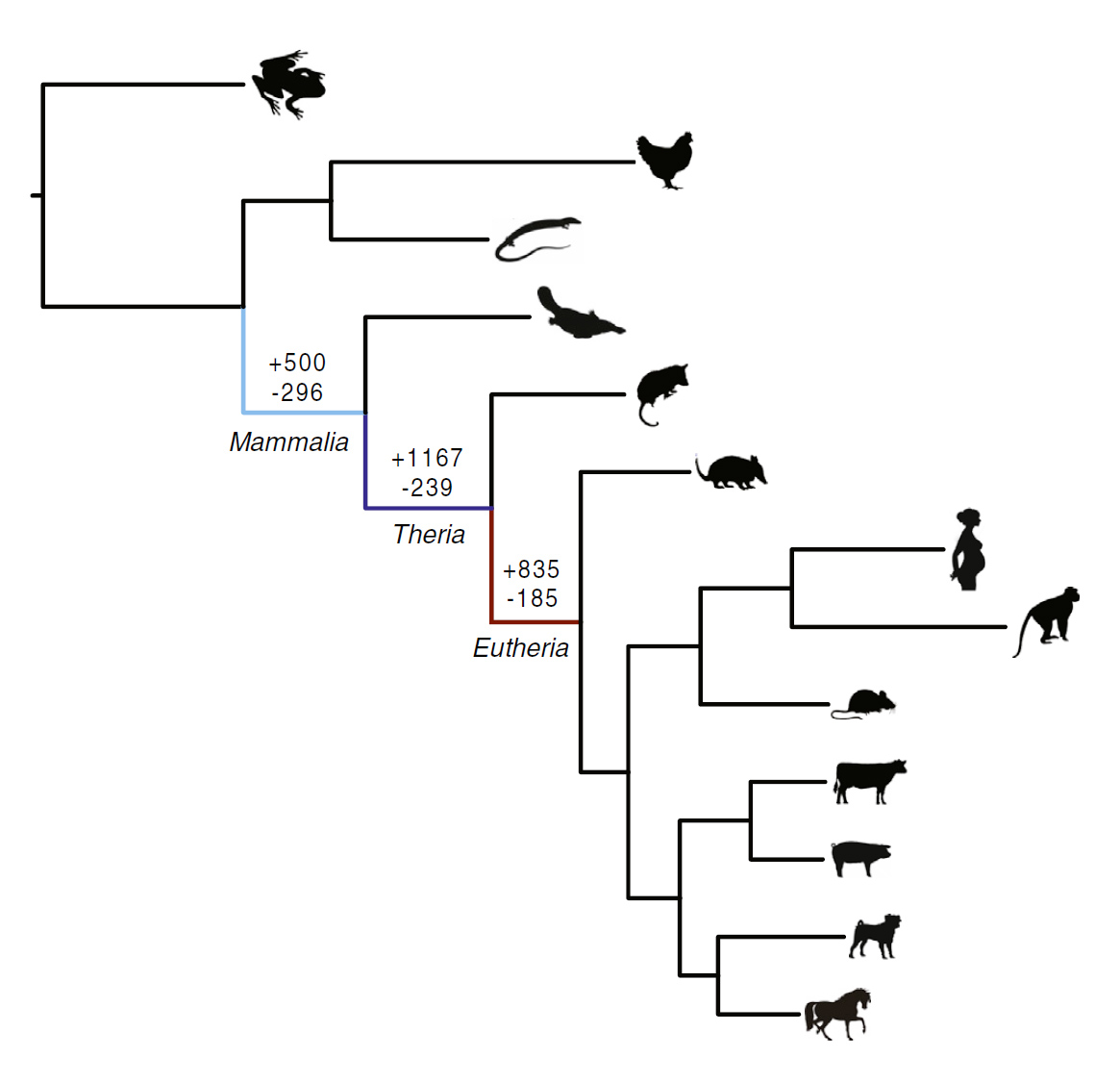 Ancient Genomic Parasites Spurred Evolution Of Pregnancy
