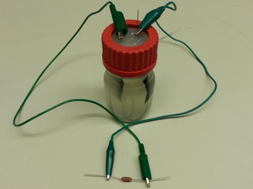 Scienziati di Stanford usano 'microbi cablati' per generare elettricità da liquami