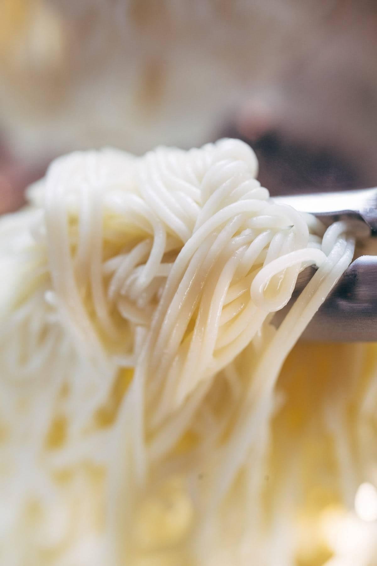 DeLallo Capellini for Capellini Pomodoro | pinchofyum.com