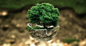 Sustainable Brands, moda sostenible, calidad de vida