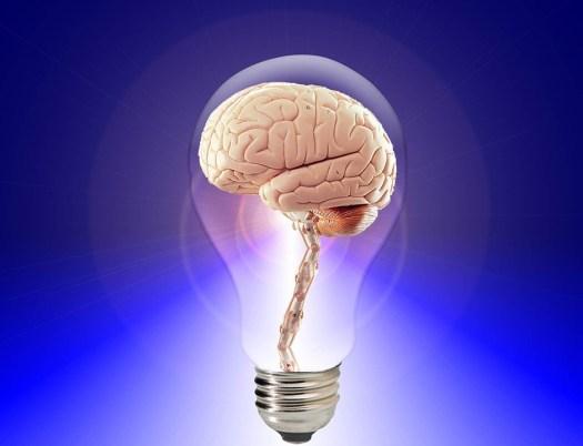 Cervello, Pensare, Umano, Idea, Intelligenza, Mente
