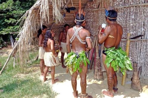 アマゾンのインディアン, 熱帯雨林, ブラジル, Tropig, 自然, インディアン