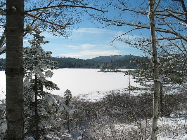Free Photo Maine Lake Water Landscape Free Image On