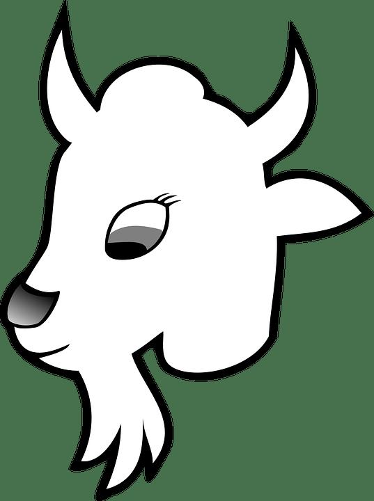 Kambing Hewan Goaty Gambar Vektor Gratis Di Pixabay