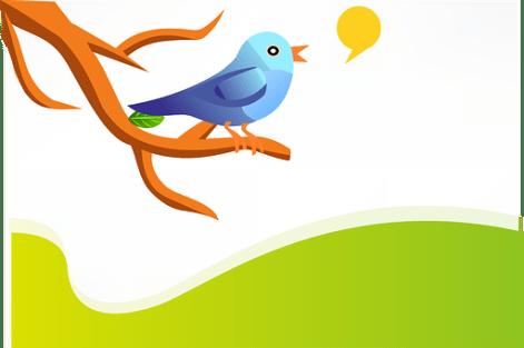 Tweet, Twitter, Bird, Blue, Twig, Branch
