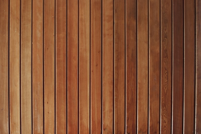 Chinese Bamboo Tree