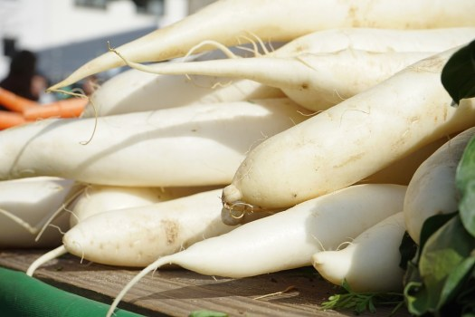 Ravanelli, Raphanus, Bianco, Verdure, Radix, Root