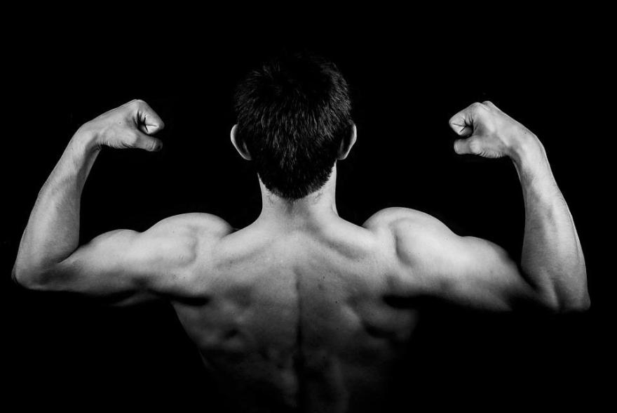 男, 男性, 少年, 人, 若いです, 筋肉, 戻る, 上腕二頭筋, Triceps, ジム