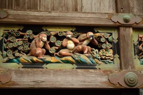 nikko monkey