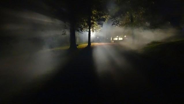 フォレスト, 霧, 暗い, 孤独, 恐怖, ホラー, 精神, 犯罪, 悪魔, 光, Ufo, 外観