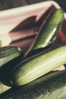 starting zucchini seed