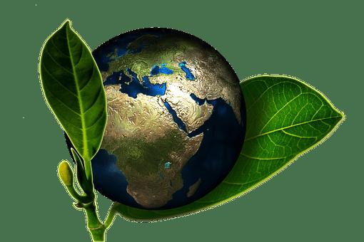 Zéro déchet : Sauver la planète