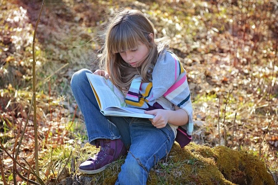 Human, Child, Girl, Sitting, Blond, Long Hair, Book