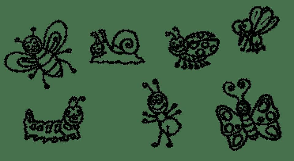 昆虫 蜂 ワーム - pixabayの無料画像