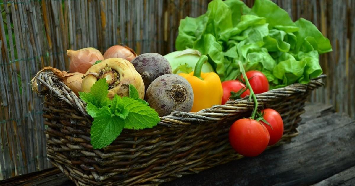 Vegetables, Basket, Vegetable Basket, Harvest, Produce