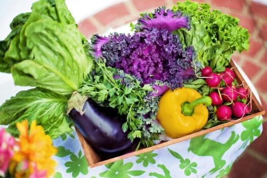 Verdure, Giardino, Vendemmia, Organici, Verde