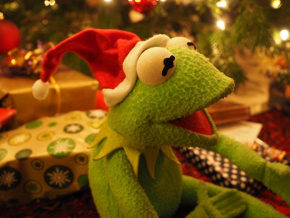 Kermit Grenouille De Photo Gratuite Sur Pixabay