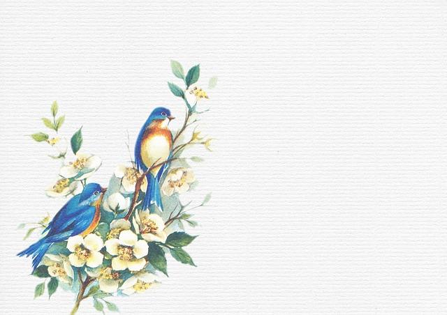 Birds White Texture Free Image On Pixabay