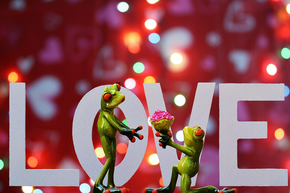 Free Photo Love ValentineS Day Pair Free Image On