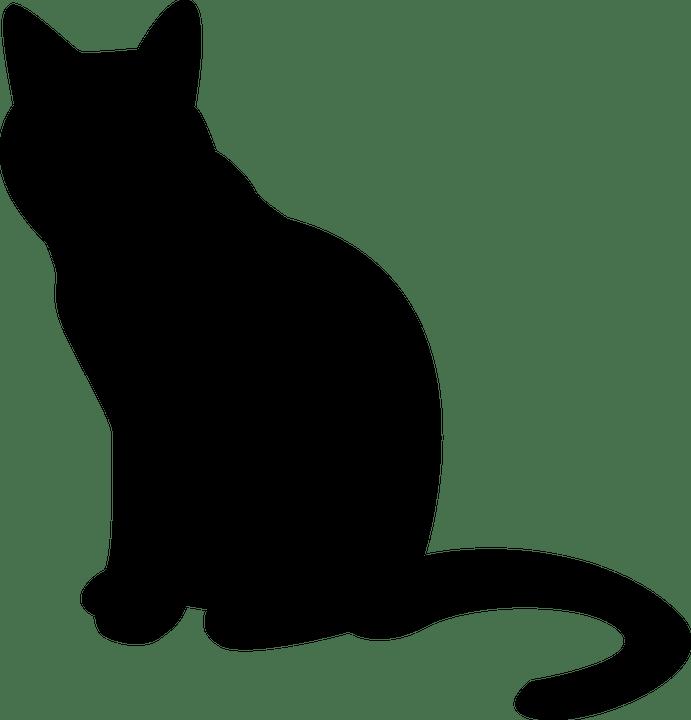 Cat Outline Transparent