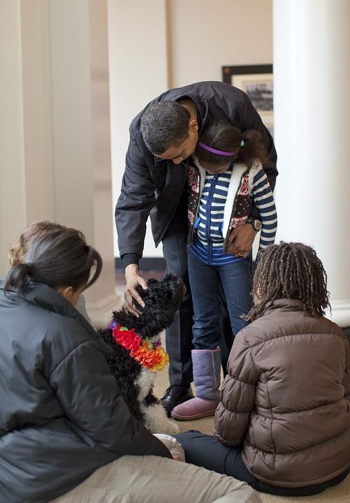 La Familia De Obama, Acoge Bo, Cachorro 6 Meses