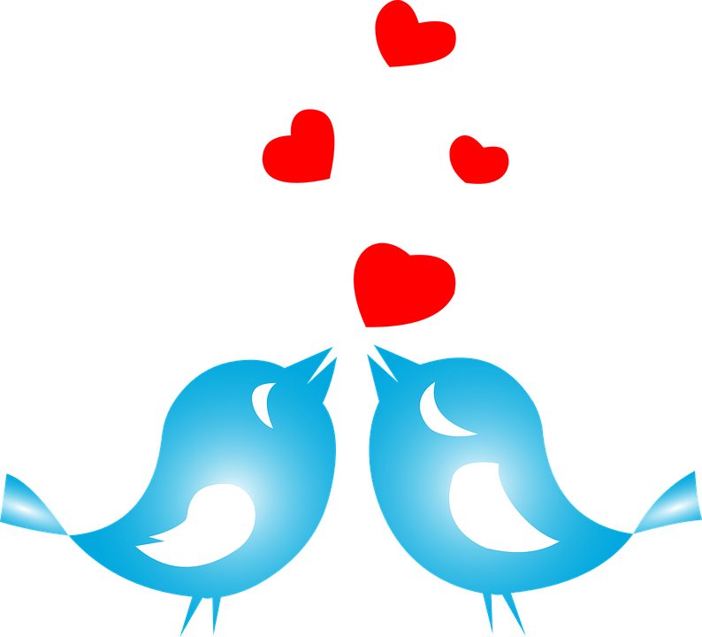 Download Free vector graphic: Love, Birds, Animals, Flying - Free ...