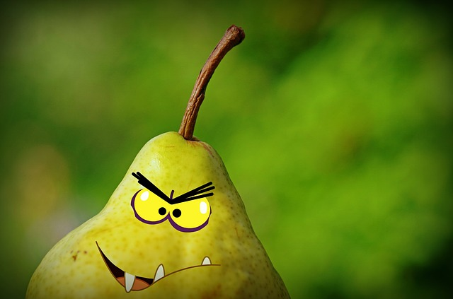 Pear Faces Grimassen Free Image On Pixabay