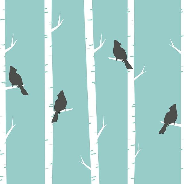 Free Illustration Birds Trees Birch Birch Trees Free
