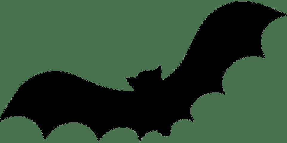 Animal, Bat, Fly, Halloween, Silhouette