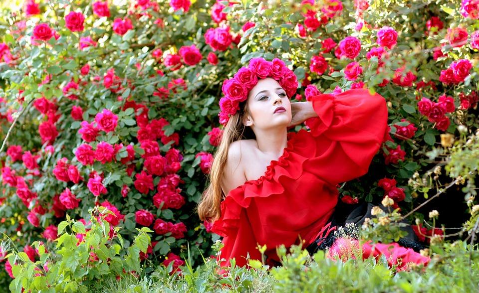 Girl Roses Red Free Photo On Pixabay