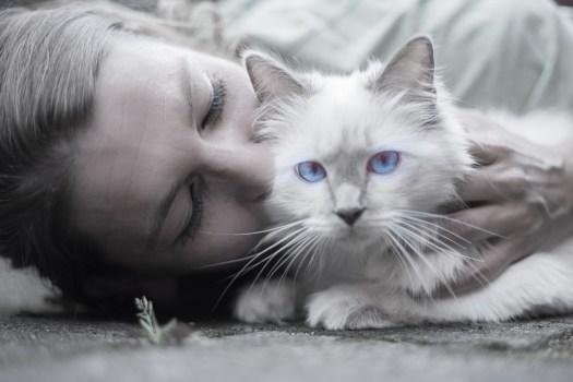 Cat, Donna, Blu, Gli Occhi, Ritratto, Baffi