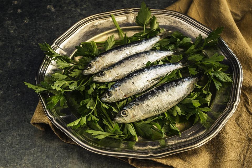 Sardine, contiene omega 3