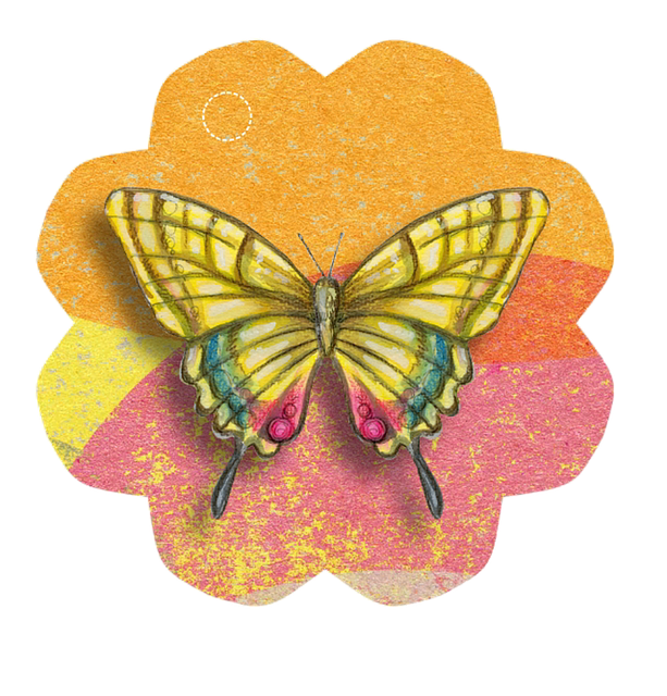Butterfly Star Tag Free Image On Pixabay