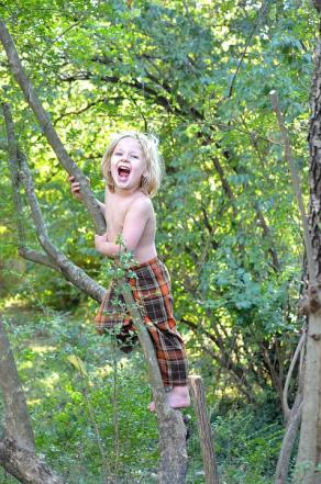 Climbing, Kid, Tree, Nature, Outdoors, Garden, Child