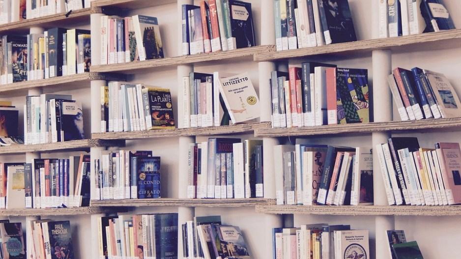 Cărţi, Bibliotecă, Citit, Rafturi, Raft, Lectură
