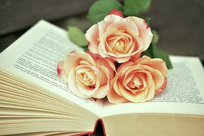 Livro, Páginas Do Livro, Leitura, Rosas, Romântico
