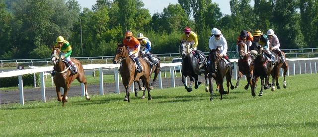 Photo Gratuite Hippodrome Cheval Course Image
